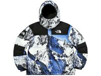 Supreme x The North Face Baltoro Jacket