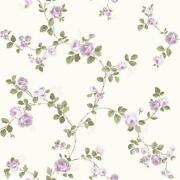 Cream Rose Wallpaper