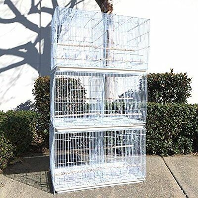 Set of 3 Large Breeding Breeder Bird Carrier Cage With Central Divider WHT 683