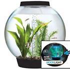 4 Gallon Fish Tank
