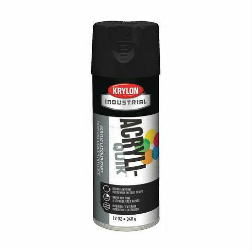 Krylon 1613 12-Oz Fast-Drying High Gloss Finish Spray Paint, Semi-Flat Black