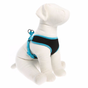 New Dog Harness, Gel Handel Leashes & Jewel Collars and Leashes
