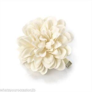 Hair flowers ebay flower hair clips mightylinksfo