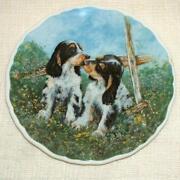 Springer Spaniel Plate