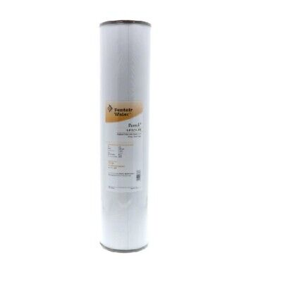 Pentek RFFE20-BB Radial Flow Iron Reduction Filter