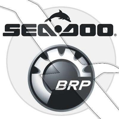 Seadoo/Sea Doo Watercraft Parts Torx Plastite Washer Screw M6.81 X 3 250000561