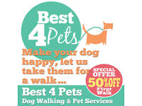 Best 4 Pets Leeds - Dog Walkers, Pet Visits, Pet Feeding and Pet Taxis in Leeds. First Walk 50% Off