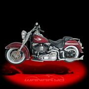 Softail Dual Exhaust