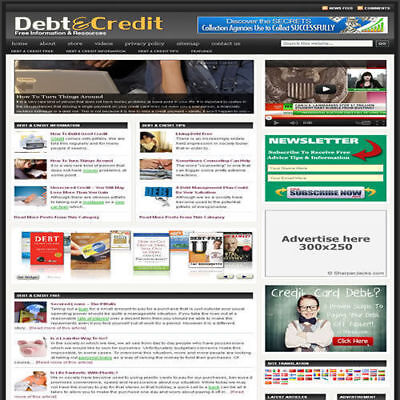 Established Finance Affiliate Website Turnkey Business For Sale Free Hosting