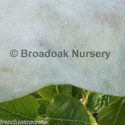 12m x 1.5m HORTICULTURAL FLEECE Garden Frost Protection