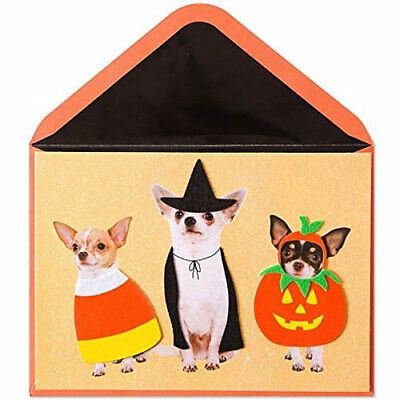 Chihuahuas In Halloween Costumes (Papyrus Halloween Card - Three Chihuahuas in 3D Felt Costumes)