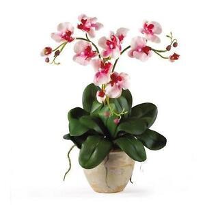 Silk Orchid Arrangements