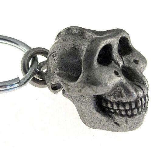 Paranthropus Boisei Australopithecus Paleoanthropology Skull Keychain