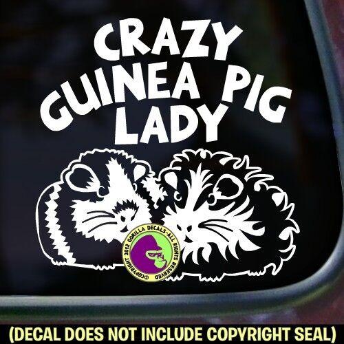 CRAZY GUINEA PIG LADY Vinyl Decal Sticker Pigs Love Car Window Wall Bumper Sign