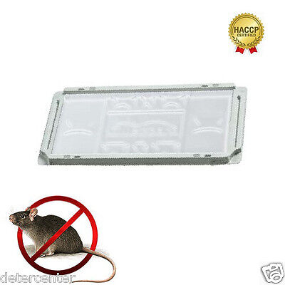 N.100 Trampas Establecen M Para Ratas Ratones Bandejas Plástico Blanca