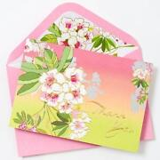 Papyrus Thank You Cards