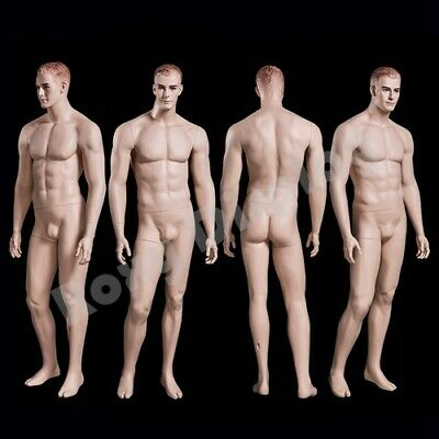 Realistic Male Mannequin With Molded Hair Mz-wen5