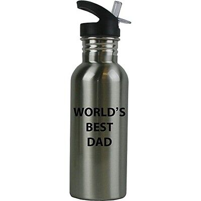 World's Best Dad Stainless Steel Silver 20 Ounce Water Bottle, Straw