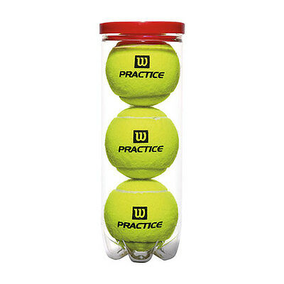 Wilson Team Practice Tennis Ball - Can of 3