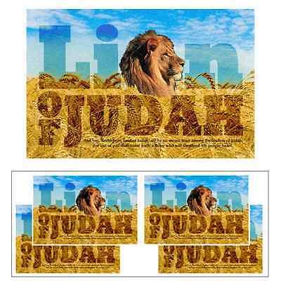 Lion Of Judah Poster (4) Messiah King Tribe Of Judah Young Jesus Son Lamb of God