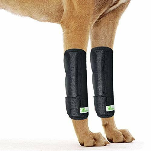 Dog Leg Brace One Pair Heals Hock Joint Wrap Sleeve for Front Legs(L/Front)