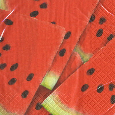 WATERMELON PICNIC SMALL NAPKINS (16) ~ Birthday Party Supplies Beverage Cake Red - Watermelon Party Supplies