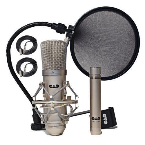 studio condenser microphone ebay. Black Bedroom Furniture Sets. Home Design Ideas