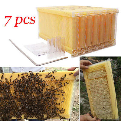 7pcs Beekeeping Auto Flow Honey Hive Frames For Langstroth Beehive Box Us Stock