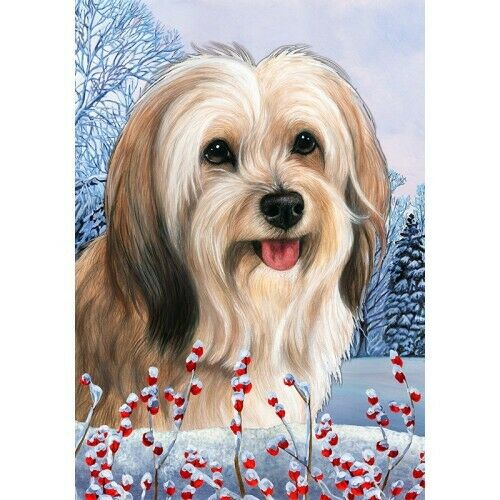 Winter House Flag - Cream Sable Tibetan Terrier 15479
