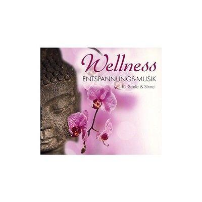 Wellness - Entspannungs-Musik für Seele & Sinne, 1 Audio-CD CD