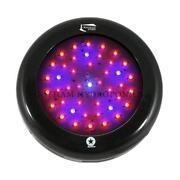 Blackstar LED