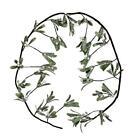 Plastic Mistletoes Plants