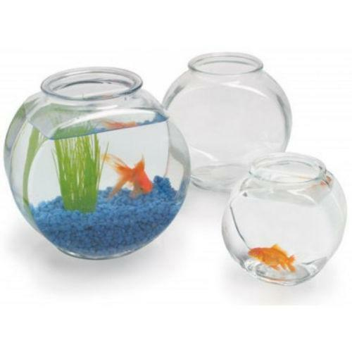 2 gallon fish bowl ebay