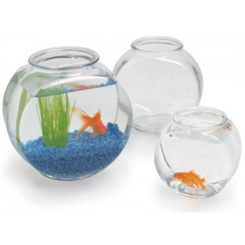 2 gallon fish bowl ebay For2 Gallon Fish Bowl