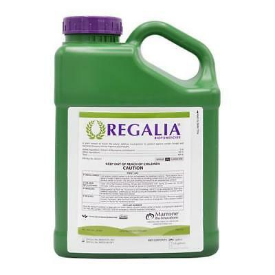 Regalia Biofungicide Gallon   Marrone Bio Innovations Omri Powdery Mildew Mold