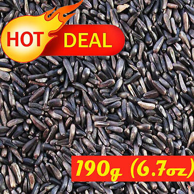 THISTLE/NIJER SEED 190g (6.7oz) NATURAL WHOLE NUTRITIUS BIRD FOOD NIZER NIGER