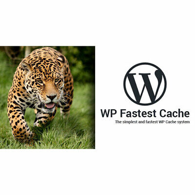Wp Fastest Cache Wordpress Plugin Premium Best Offer 2020