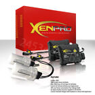 Xenon Green Front Car & Truck Xenon Lights