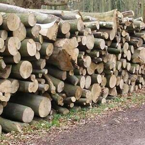$125 Firewood hardwood logs &1yr dry split  for sale 580-0372