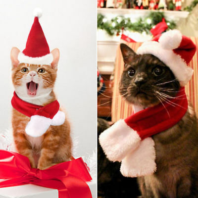 2PCS Pet Cat Dog Santa Hat + Scarf Christmas Xmas Red Holiday Costume Apparel M1 - Cat Santa Costume