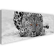 Leinwand Leopard