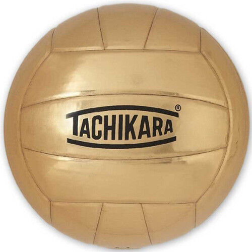 Authorized Retailer of Autograph Volleyball - The Champ