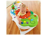 Fisher Price Baby Walker and Einstein Music,Learn, Play