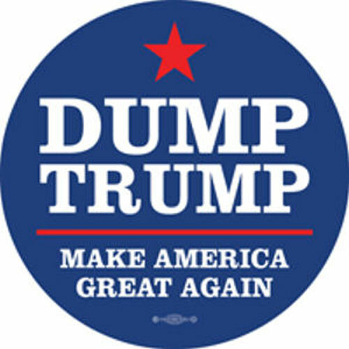 Dump Donald Trump Make America Great Again Joe Biden Vinyl Bumper Sticker Decal