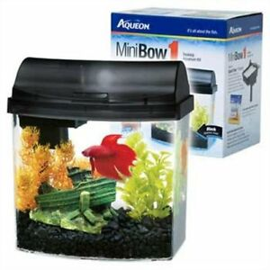 Aquarium Betta 1 gallon