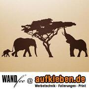 Wandtattoo Afrika Baum