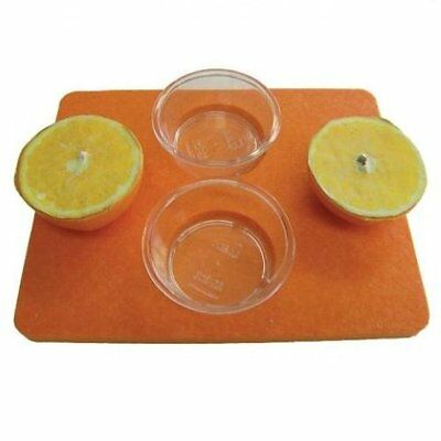 Birds Choice Jelly Tray Feeder Bird Feeder SNOT