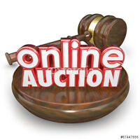 Online and Silent Auction Fundraiser