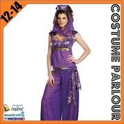 Womens Fancy Dress Costumes Disney