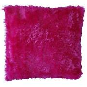 Hot Pink Throw Pillows